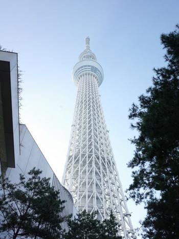 Tokyo_skytree_town_christmas_countd
