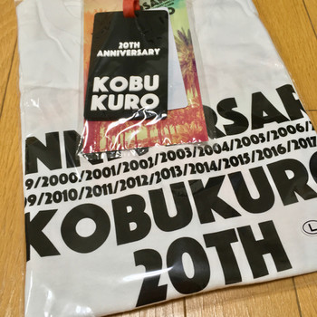 Kobukuro_20th_anniversary_live_in_m