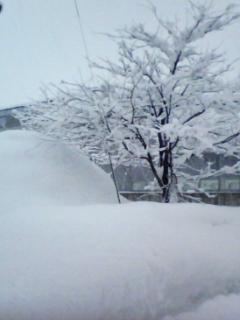 新潟県十日町に到着